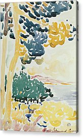 Pardigon Acrylic Print by Henri-Edmond Cross