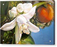 Parfum D Acrylic Print by Muriel Dolemieux