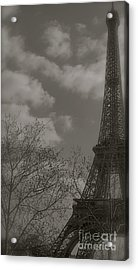 Paris In The Spring Acrylic Print by Louise Fahy