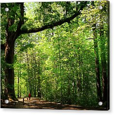 Paris Mountain State Park South Carolina Acrylic Print