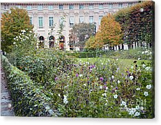 Acrylic Print featuring the photograph Paris Palais Royal Gardens - Paris Autumn Fall Gardens Palais Royal Rose Garden - Paris In Bloom by Kathy Fornal