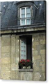 Paris Window Acrylic Print
