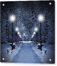 Park At Christmas Acrylic Print
