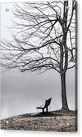 Park Bench And Leafless Tree In Fog - Hi-key Acrylic Print