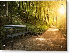 Park Bench In Fall Acrylic Print by Chevy Fleet
