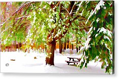 Park In Winter Acrylic Print by Lanjee Chee