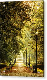 Acrylic Print featuring the photograph Park Lane by Jaroslaw Grudzinski