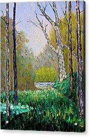 Park Meadow Acrylic Print by Stan Hamilton