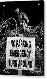 Parking Enforcement Acrylic Print by Olivier Le Queinec