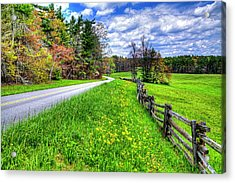 Parkway Spring Acrylic Print by Dale R Carlson