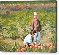 Parlee Pumpkins Acrylic Print
