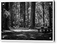 Parque Estadual-horto-campos Do Jordao-sp Acrylic Print