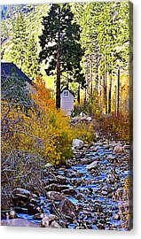 Parrish On The Carson Acrylic Print by Larry Darnell