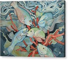 Parromania Acrylic Print by Liduine Bekman