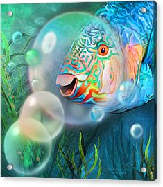 Parrot Fish - Through A Bubble Acrylic Print