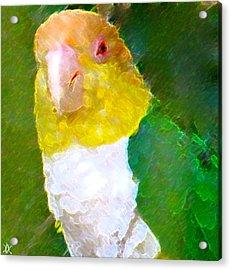 Parrot Grace Acrylic Print