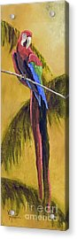 Parrot Is A Character With Gold Leaf By Vic Mastis Acrylic Print by Vic  Mastis