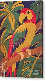 Parrot Acrylic Print by Lucyna A M Green