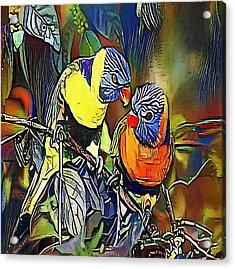 Parrot, Rainbow Lorikeet - My Www Vikinek-art.com Acrylic Print