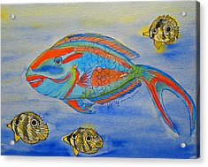 Parrotfish And Butterflies Acrylic Print