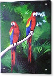 Parrots Molly And Polly Acrylic Print