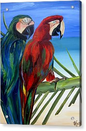 Parrots On The Beach Acrylic Print by Patti Schermerhorn