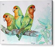 Parrots Trio Acrylic Print
