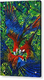 Parrots With Newborn Acrylic Print