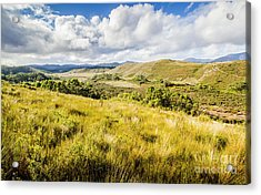 Parting Creek Regional Reserve Tasmania Acrylic Print by Jorgo Photography - Wall Art Gallery