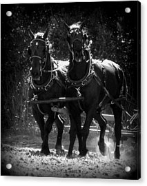 Partners In Strength 1 Acrylic Print