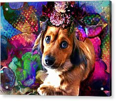 Party Animal Acrylic Print