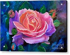 Gala Rose Acrylic Print