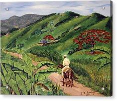 Paseo Por El Campo Acrylic Print