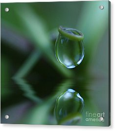 Passion Drop Acrylic Print