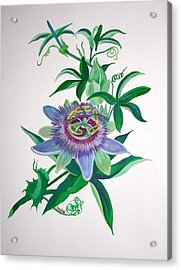 Passion Flower Acrylic Print by Tracey Harrington-Simpson