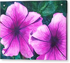 Passionate Petunias Acrylic Print by Ally Benbrook