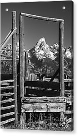 Past Its Time Acrylic Print by Sandra Bronstein