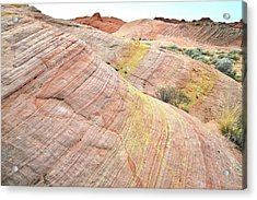 Acrylic Print featuring the photograph Pastel Dunes In Valley Of Fire by Ray Mathis
