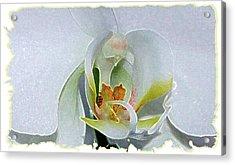 Acrylic Print featuring the digital art Pastel Orchid by Ellen Barron O'Reilly