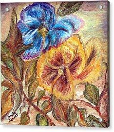 Pastel Pansy Acrylic Print by Mikki Alhart