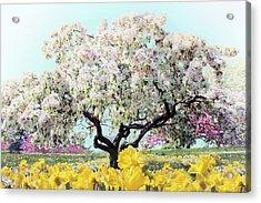 Pastel Park Acrylic Print