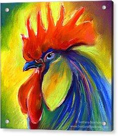 Pastel Rooster By Svetlana Novikova ( Acrylic Print