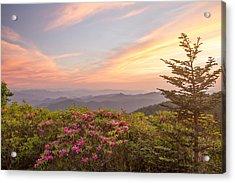 Pastel Sky Acrylic Print by Doug McPherson