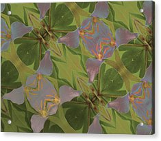Pastel Triliium Acrylic Print by Jean Noren