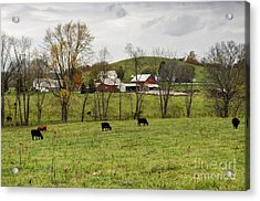 Acrylic Print featuring the photograph Pastoral by Larry Ricker