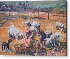 Pasture Acquaintances Acrylic Print by Alicia Drakiotes