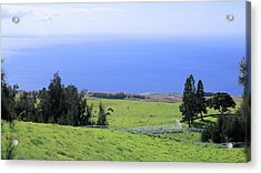 Pasture By The Ocean Acrylic Print