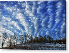 Pasture Field And Winter Sky Acrylic Print by Thomas R Fletcher