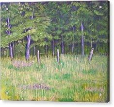 Pasture Paradise Acrylic Print