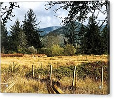 Acrylic Print featuring the photograph Pasture, Trees, Mountains Sky by Chriss Pagani